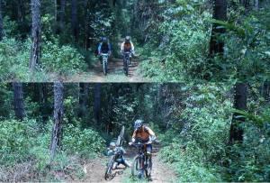 puluhan kilometer di dalam hutan pinus .....gak panas dan terrainnya tanah lembut